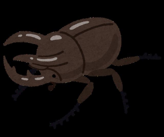 bug_kabutomushi_caucasus_ookabuto.png