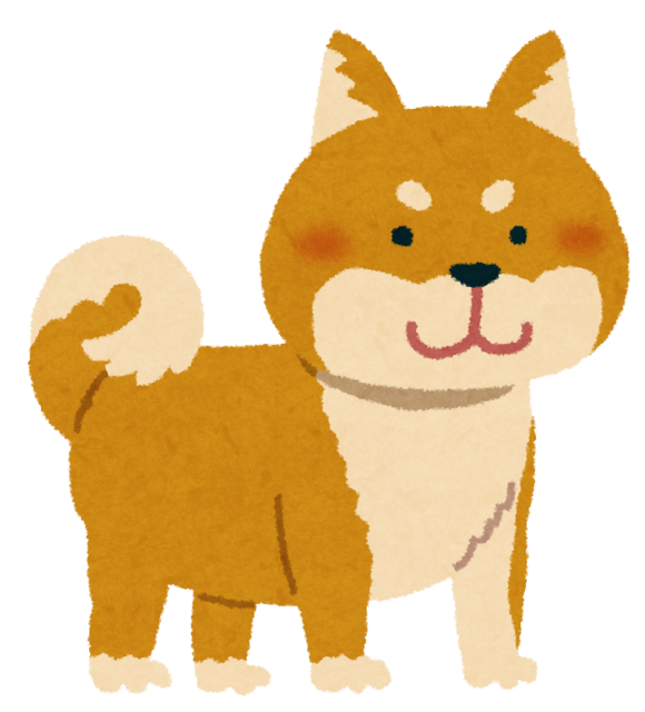 shibainu_brown.png